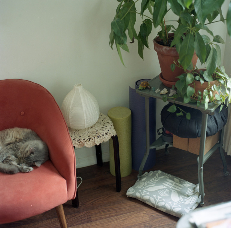 Picture of a red chair and plants