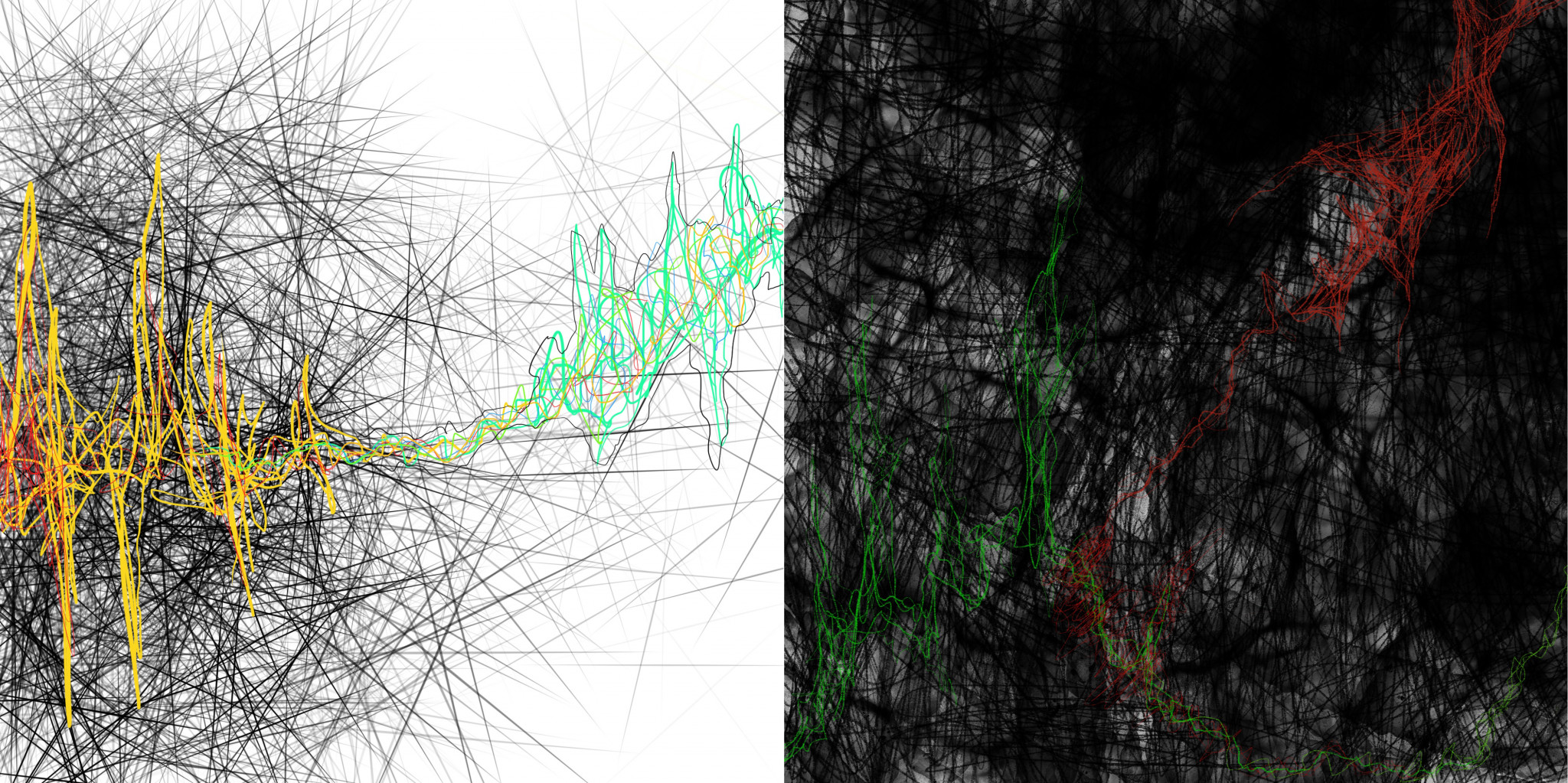 Thin black hashes on a white background underlay a jagged tangle of lines extending from left to right, yellow and red into green; lacy black hashes crisscross a foggy black background, overlaid with a jagged bolt of green and red lines
