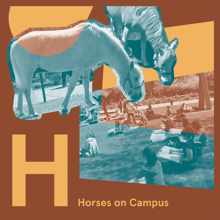 Horses on Campus