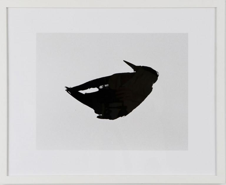 "Natalia Petkov, MFA Fine Arts (Sculpture) '21, ""Untitled (frozen bird)"" (2021), silver gelatin print, 16 x 20 inches"